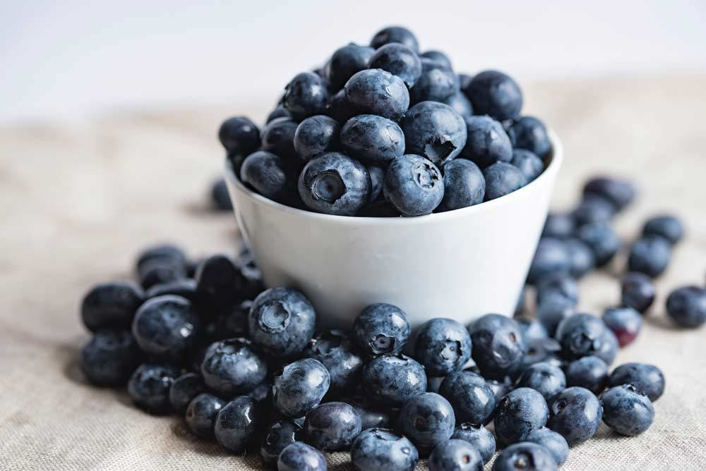 unemploed peoples livelihood - blueberries in a bowl